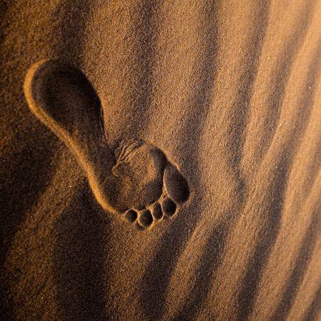 Barefoot Beach Luxury