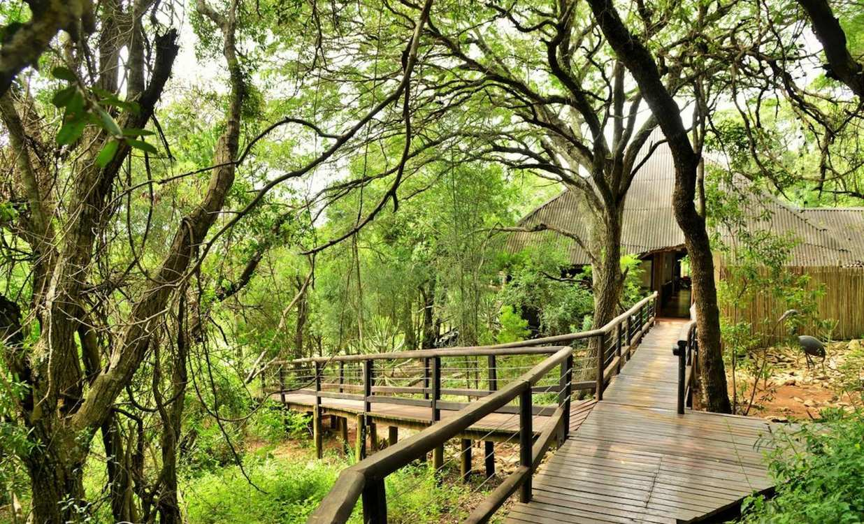 4 Star Nibela Lodge, iSimangaliso Wetland for 2 nights from R2 750* pps - self drive