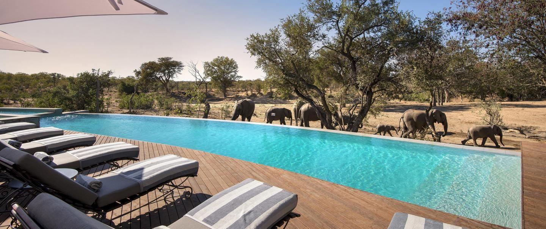 andBeyond Ngala Safari Lodge for 2 nights from R9 800* pps - self drive