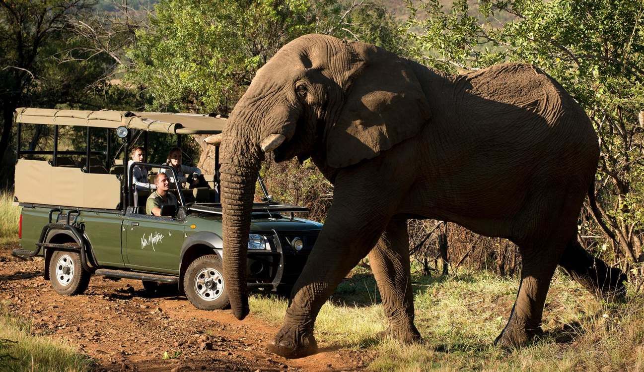 4 Star Kwa Maritane Bush Lodge Pilanesberg for two nights from R4 450 pps - self drive