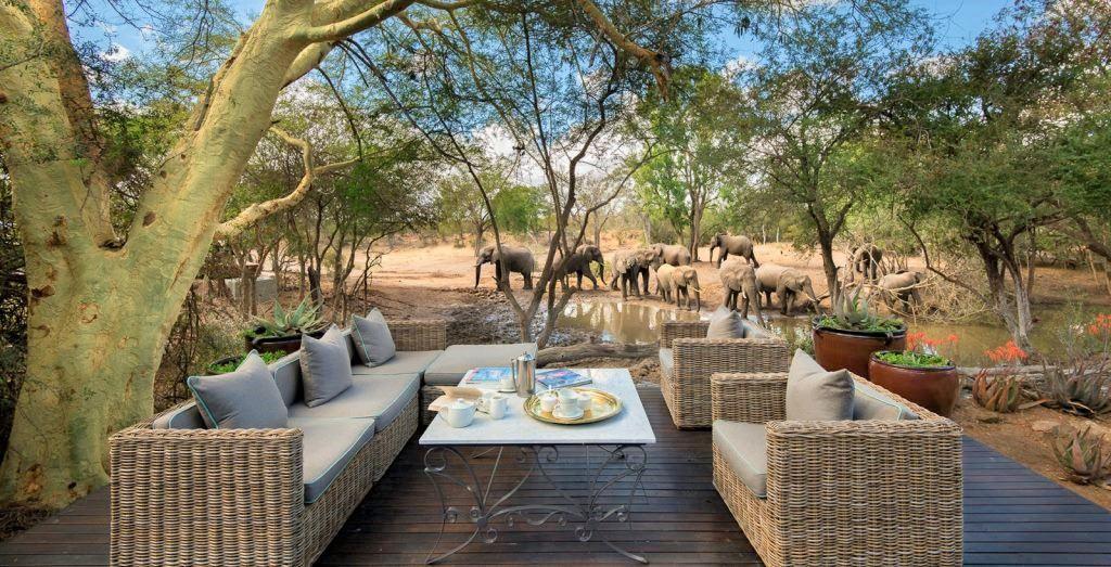 Luxury 5*  &Beyond Ngala Safari Lodge - SA Resident special - save R10 930.00 pps