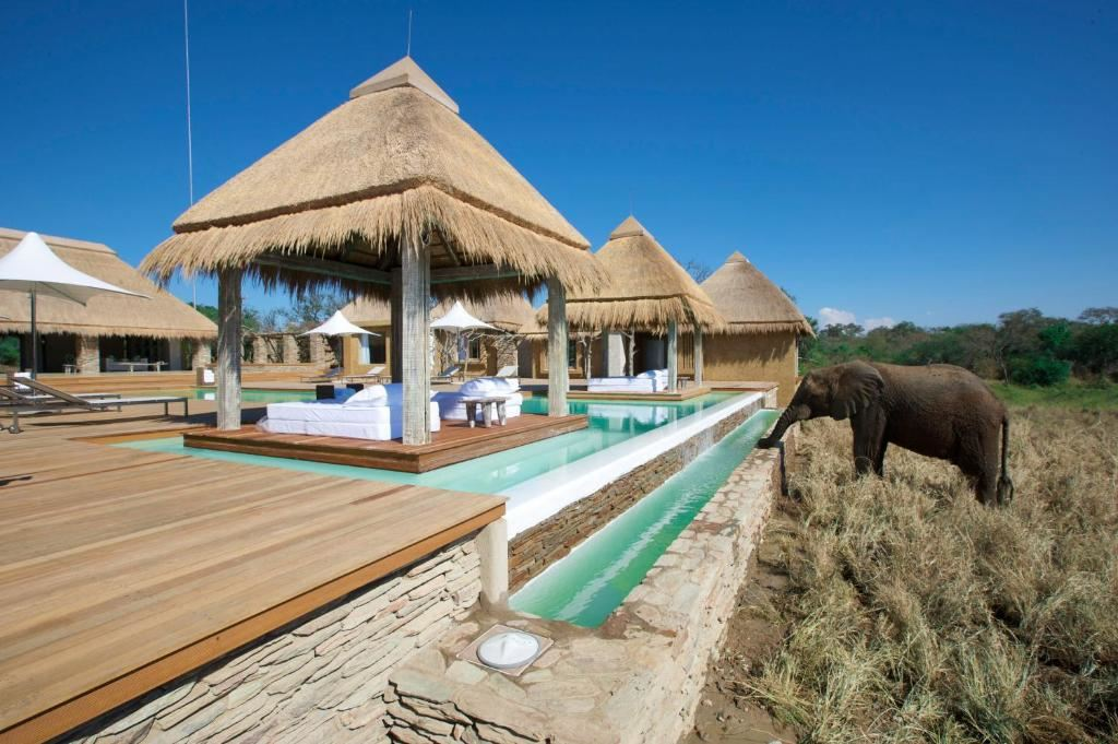 Kapama River Lodge - Midweek - Stay for 3 pay for 2