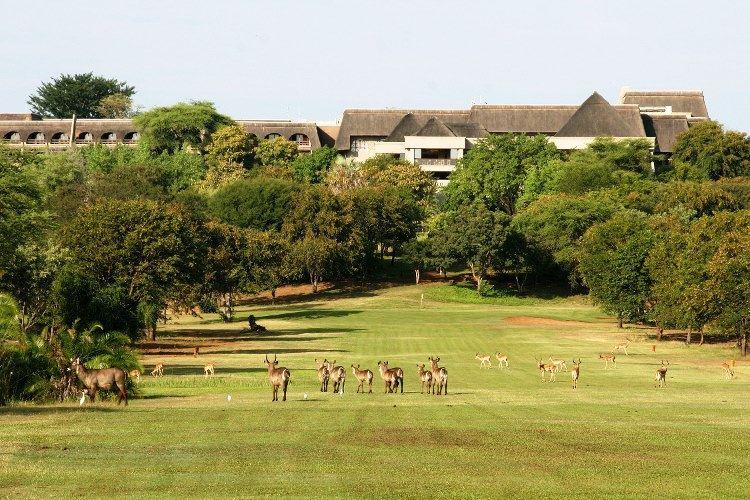 3*Plus Elephant Hills Resort - Victoria Falls Package ( 3 Nights)